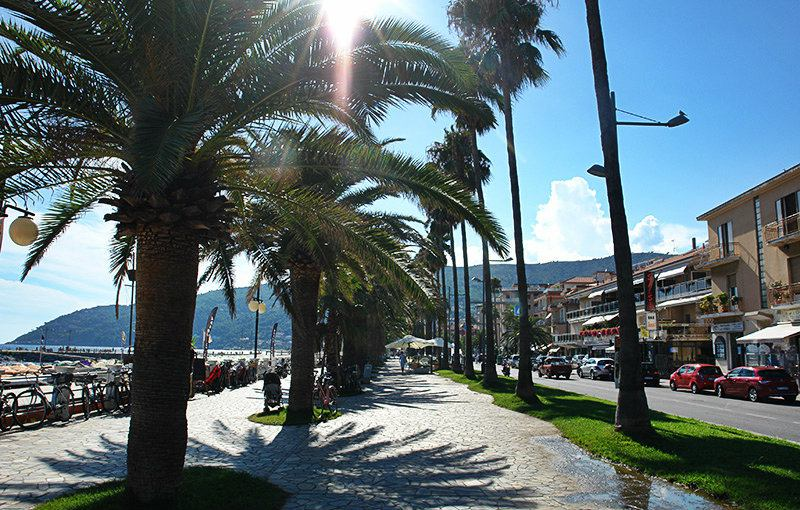 A street with palm trees in Andora