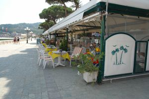 Bar Cosmo Cafes
