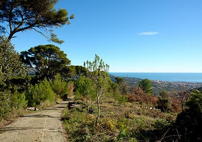 Trekking and hiking in Liguria - paradise for hikers