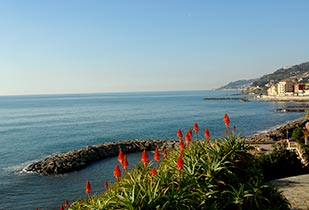 Fantastic seaview of Liguria