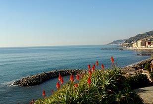 Fantastic seaview of Liguria