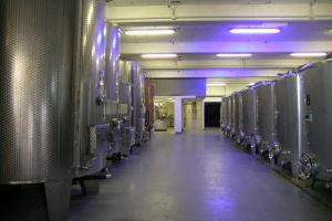 Calvini Luigi Wine Growers in Liguria