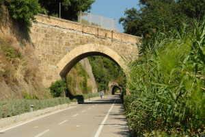 Cicli Bosco Luca Bicycle Rentals in Liguria