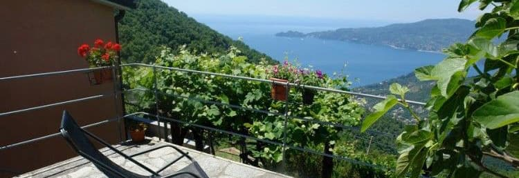 Holiday home with a wonderful sea view in a quiet location in Liguria