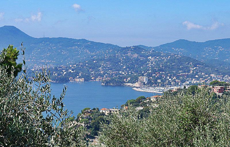 Bekijk naar Zoagli vanaf een berg