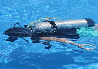 Diving in Liguria - explore underwater by snorkelling, participate in a diving excursion or visit a diving school