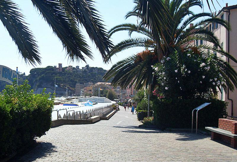 A street with flowers and palm trees along the coast in Varazze