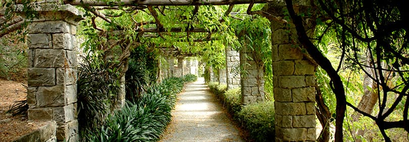 A path for a nice walk in Hanbury Gardens