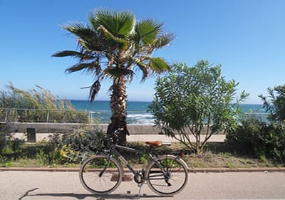 A bike in the Pista Ciclabile, 26km bike path