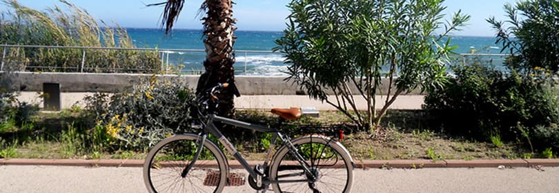 Enjoy the Pista Ciclabile bike path along the Ligurian coastline, which is 26km long