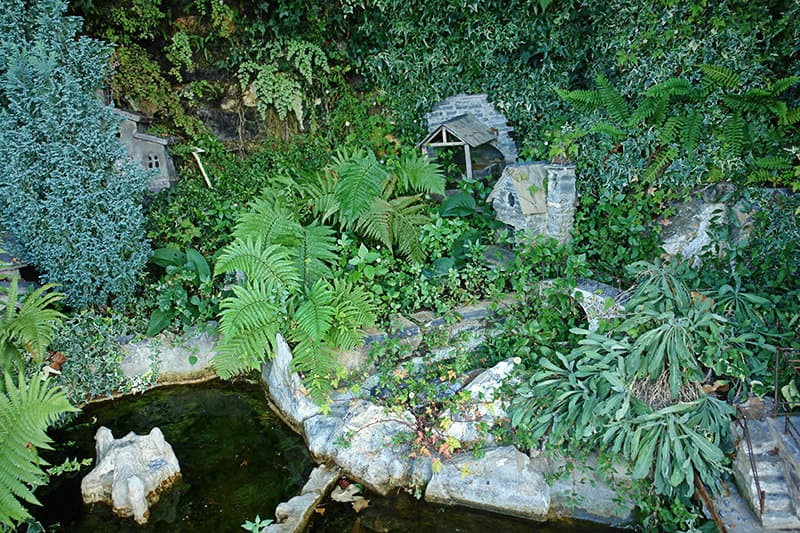 Diverse nature in Triora