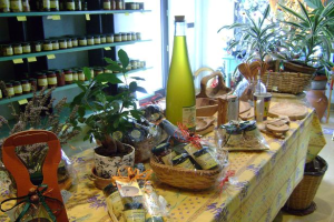 Frantoio Bestoso s.a.s. Olive Mills in Liguria