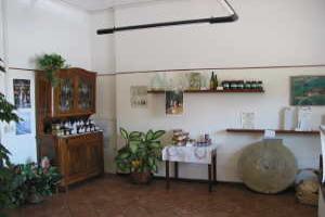 Frantoio Sciandino Olive Mills in Liguria