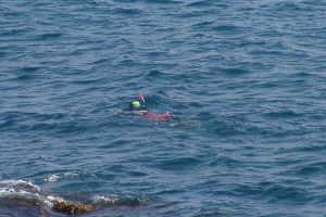 Nautilus Diving centres in Liguria