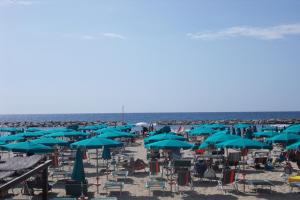 Tre Alberi Beaches in Liguria