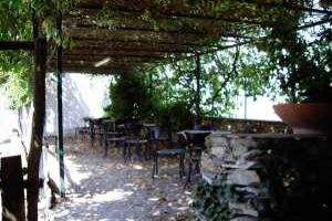 Trattoria dalla Etta Restaurants in Liguria