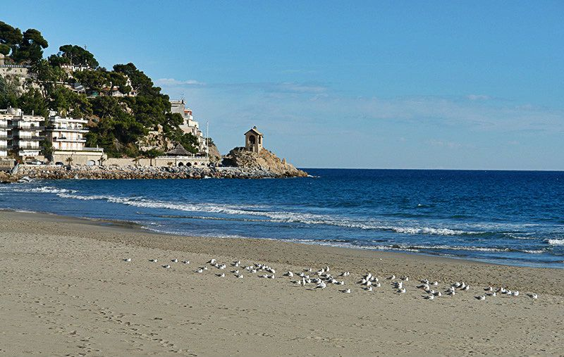Sandy beach of Alassio