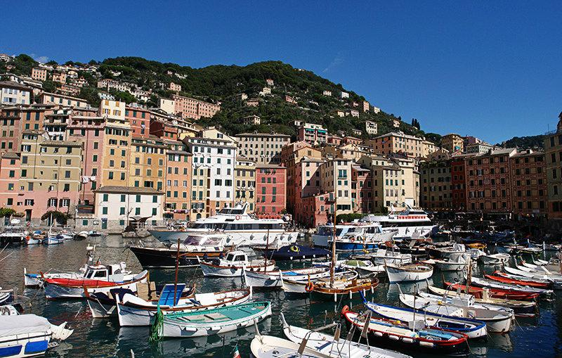 A beautiful port of Camogli