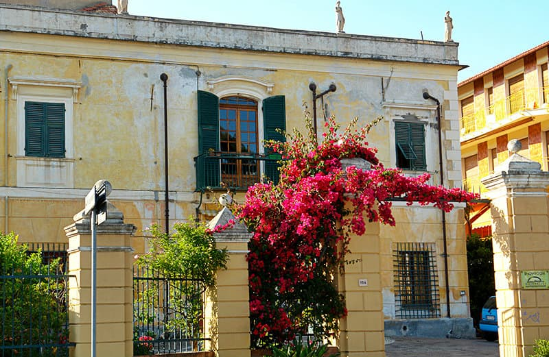 Flowers next to a house in San Bartolomeo al Mare
