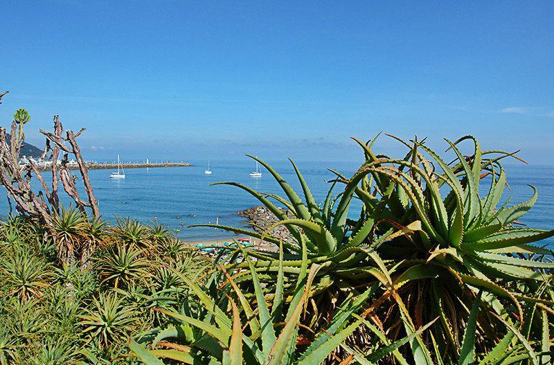 A beautiful seaview in Imperia, Porto Maurizio