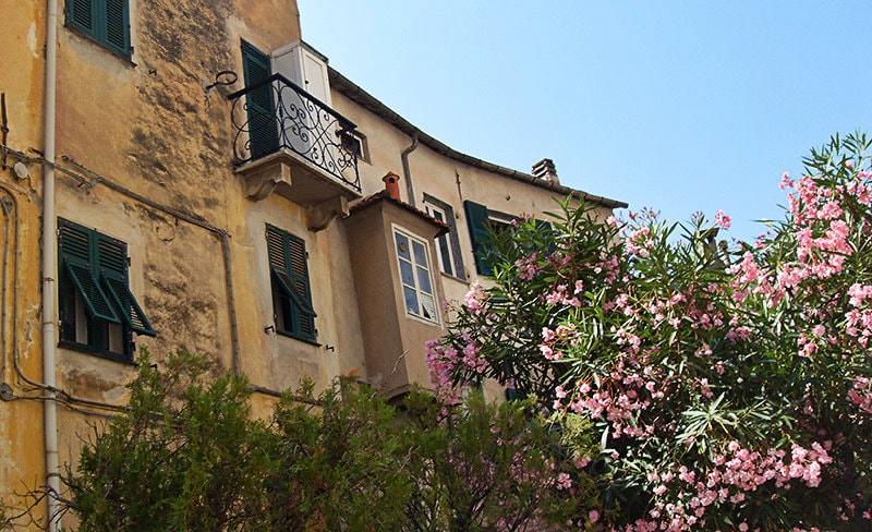 Flowers next to a haus in Pontedassio