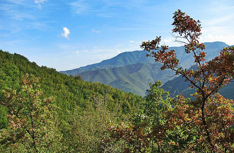 A view from a mountain to a village Molini di Triora