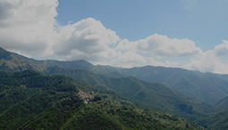 The mild climate attracts tourists to Liguria all year round